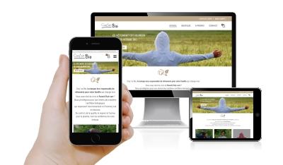 agence web, sites e-commerce, vente en ligne, lisieux, pont-l'évêque, deauville, pays d'Auge, calvados, normandie