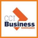 cci business normandie acteur numérique lisieux